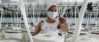 Greenpeace pointe des produits toxiques chez les marques de luxe
