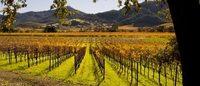 La maison Chanel rachète un vignoble californien