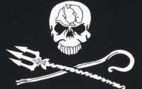 EMP kooperiert mit Sea Shepherd