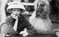 Balenciaga, il Textil Museum di Boras rende omaggio al maestro della haute couture