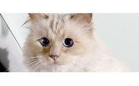 Bardot écrit à Choupette, chatte de Lagerfeld, une lettre anti-fourrure