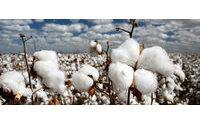 Satın alma: Textile Exchange için yeni bir istem sistemi
