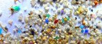 """你的磨砂膏可能会害死小动物!美国或将禁止""""微球""""在护肤品中的使用"""