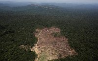 Natura urges Brazil to protect Amazon after fires hit suppliers