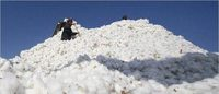 'Organic cotton production emits 50% less CO2'