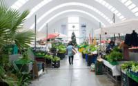 Concurso PFN desfila esta sexta-feira no Mercado de Matosinhos