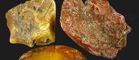 «Калининградский янтарный комбинат» организует аукцион на право купли-продажи янтаря