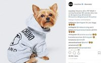 Moschino x H&M : une collection qui a du chien