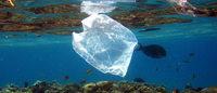 Hintergrund: Einzelhandel ringt um Strategie im Kampf gegen die Plastiktüte