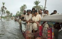 Regenflut in Pakistan vernichtet Baumwolle