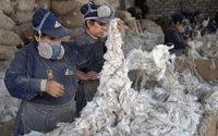 Pérou : la laine d'alpaga, fer de lance de l'industrie textile