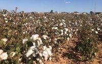 De Inditex a Chanel, la industria textil pone rumbo hacia la sostenibilidad