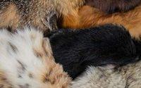 """Il """"no fur"""" di Gaultier: le reazioni di Peta e IFF"""