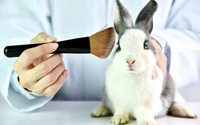 Estée Lauder Companies fights animal testing with Humane Society International alliance