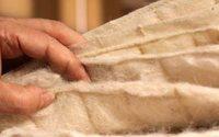 La fibra de alpaca se hace a un nuevo uso que aportará 11% adicional a la facturación nacional