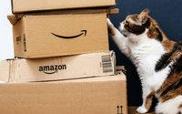 E-commerce : Amazon aurait perdu du terrain en France fin 2018
