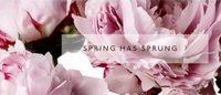 全球鲜花市场高达500亿美元Net-a-porter创始人Natalie Massenet投资鲜花电商