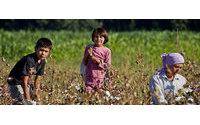 Единый хлопковый холдинг появится в Узбекистане