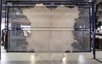 Apparition: Ecco stellt das erste transparente Kuhhautleder vor