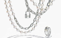Jewellery: The new frontier for luxury groups