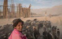 Burberry поможет Афганистану развить рынок кашемира