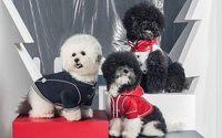 La doudoune Moncler désormais disponible... pour les chiens