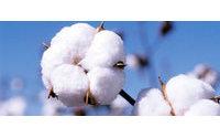 H&M ist auch 2011 weltweit größter Bio-Baumwoll-Nutzer