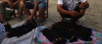 Perruques et postiches : le filon du cheveu chinois
