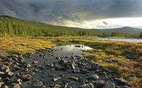 Natura Siberica планирует производить «сибирский» парфюм