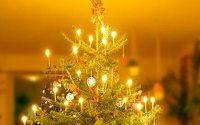 HDE sagt Plus im Weihnachtsgeschäft voraus
