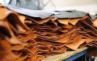 Во Владивостоке построят фабрику по производству кожи