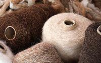 Perú fortalece su exportación de lana de alpaca a China