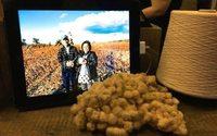 Algodão de Fukushima para o mundo