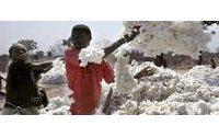 Хлопок: ВТО согласилась вернуть налоги развивающимся странам