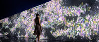 チームラボ 東京の花々を描いた参加型アートをグッチ新宿で発表