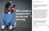 UK consumers switch on to pet clothing as brand opportunities expand