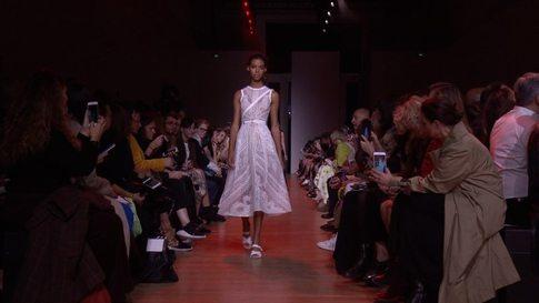 9110dea525d6 Elie Saab - Women s Spring Summer 2019 Collection in Paris - Video ( 20476)