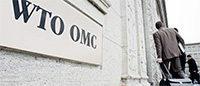 OMC : 1 000 milliards de dollars d'exports supplémentaires grâce au TFA ?