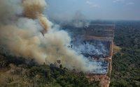 La crise en Amazonie accroît la pression sur le secteur du cuir brésilien