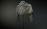 Die Spitzen der Gesellschaft: Die Sammlung historischer Spitzen des Textilmuseums St.Gallen