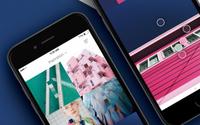 Pantone запустил мобильное приложение