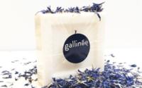 Unilever prend des parts dans Gallinée