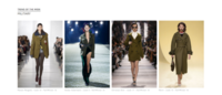 Tagwalk is the first search engine for fashion shows