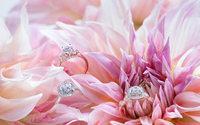Monique Lhuillier launches engagement rings with Helzberg Diamonds
