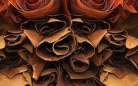La manufacture toulousaine Authentic Material opère une levée de fonds d'1,5 million d'euros