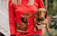 Joules has plenty to smile about as H2 is strong in-store and online