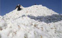 Индия импортирует 20 тыс. тюков хлопка из Пакистана