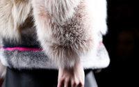Kalifornien verbietet den Verkauf neuer Pelzprodukte