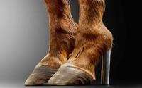 Le musée des Arts Décoratifs consacre sa prochaine exposition à la chaussure