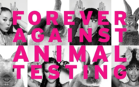 Body Shop calls for complete end to animal testing